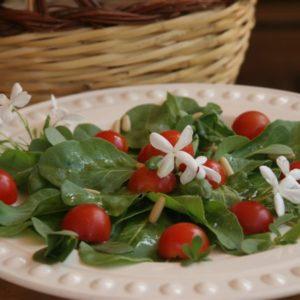 Benessere E Leggerezza: L'insalata, Il Piatto Più Cool!